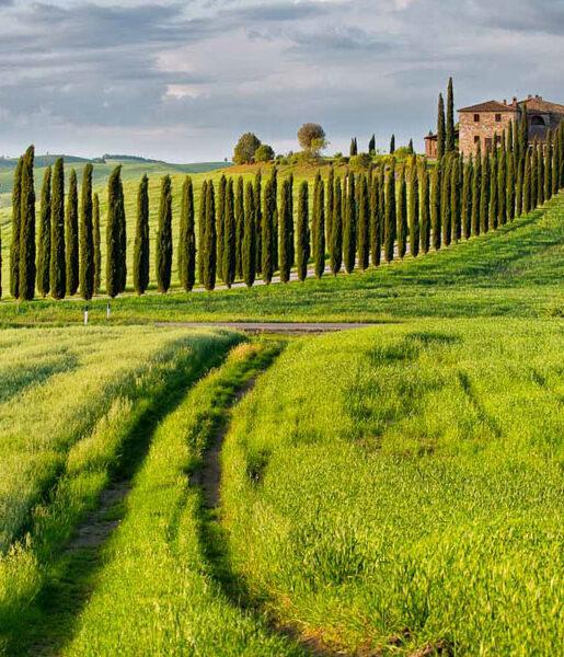 IO e TOSCANA - Toscana Versilia Blog